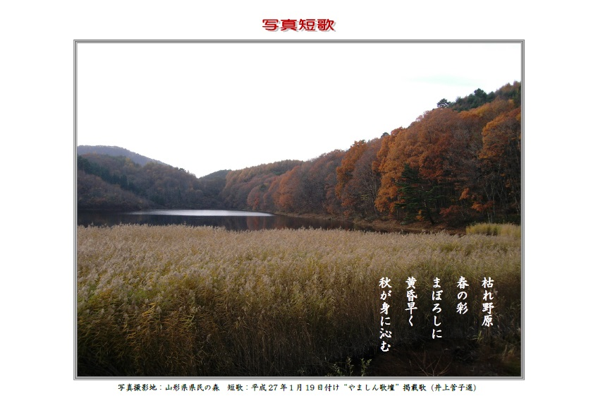 枯れ野原春の彩まぼろしに黄昏早く秋が身に染む
