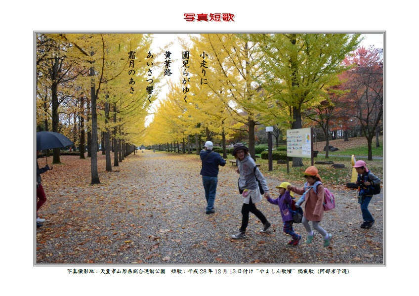 小走りに園児らがゆく黄葉路あいさつ響く霜月のあさ