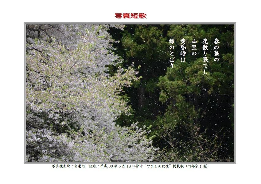 春の暮の花散り果てし山里の黄昏時は緑のとばり