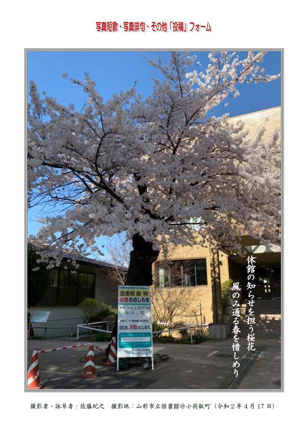 休館の知らせを担う桜花風のみ通る春を惜しめり