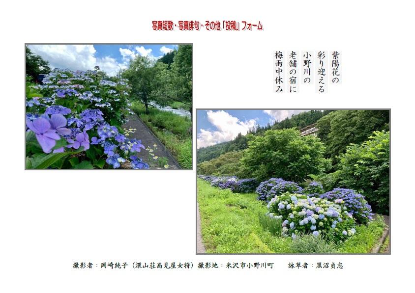 紫陽花の彩り迎える小野川の老舗の宿へ梅雨中休み