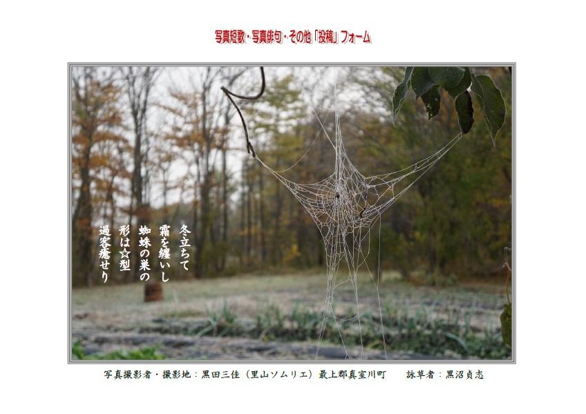 冬立ちて霜を纏いし蜘蛛の巣の形は☆型過客癒せり