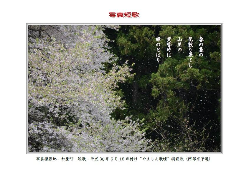 作品番号-27:春の暮の花散り果てし山里の黄昏時は緑のとばり