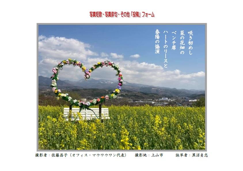 咲き初めし菜の花畑のベンチ席ハートのリースと春陽の協演