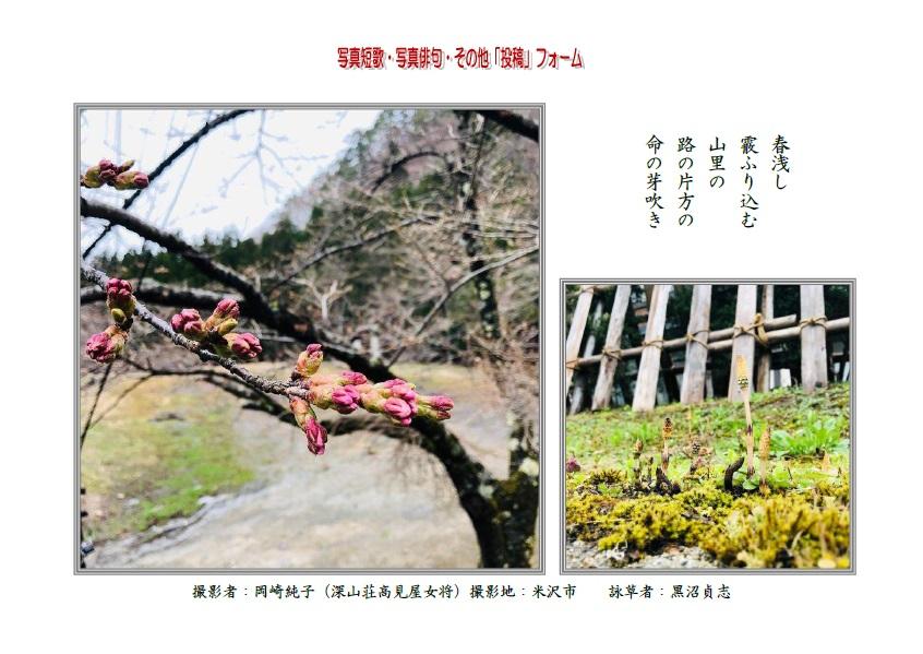 春浅し霰ふり込む山里の路の片方の命の芽吹き