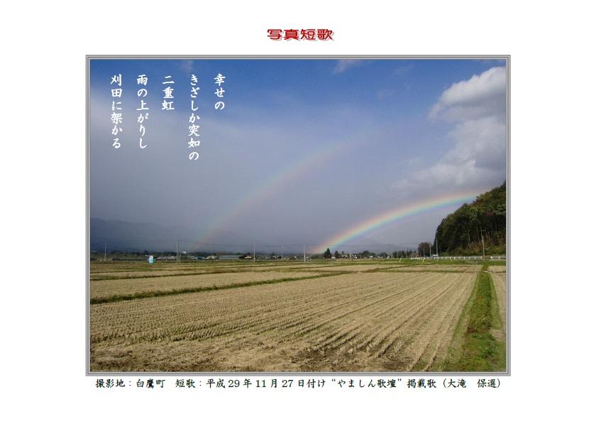 作品番号-34:幸せのきざしか突如の二重虹雨の上がりし刈田に架かる