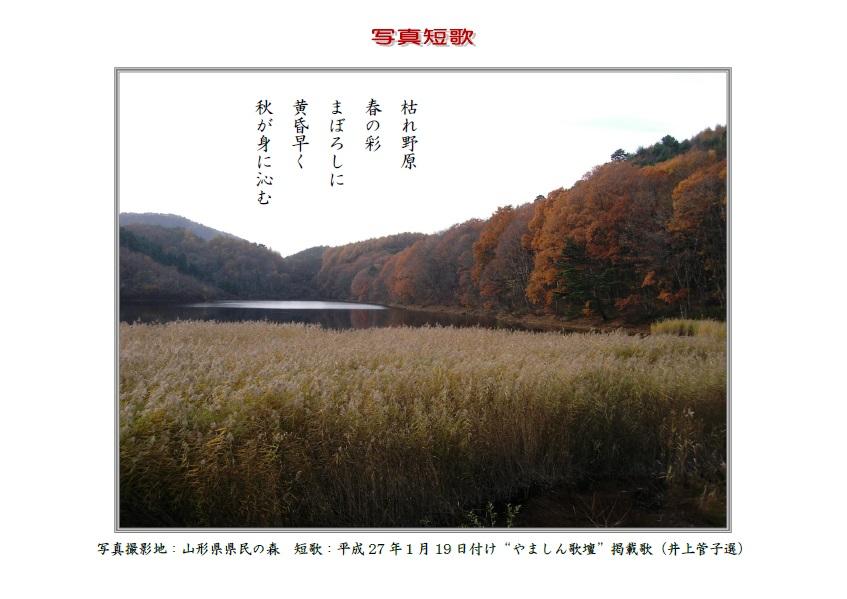 作品番号-33:枯れ野原春の彩まぼろしに黄昏早く秋が身に染む